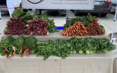 Growtopia Farms Market Debuts